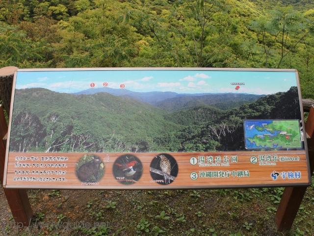 奄美大島の赤土山展望台から見た湯湾岳