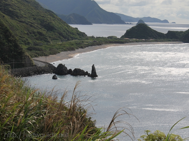 奄美大島の戸円にあるロウソク岩
