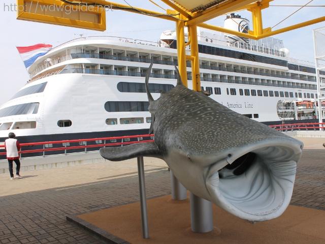 大阪港に停泊中のホーランドアメリカ ラインのフォーレンダム