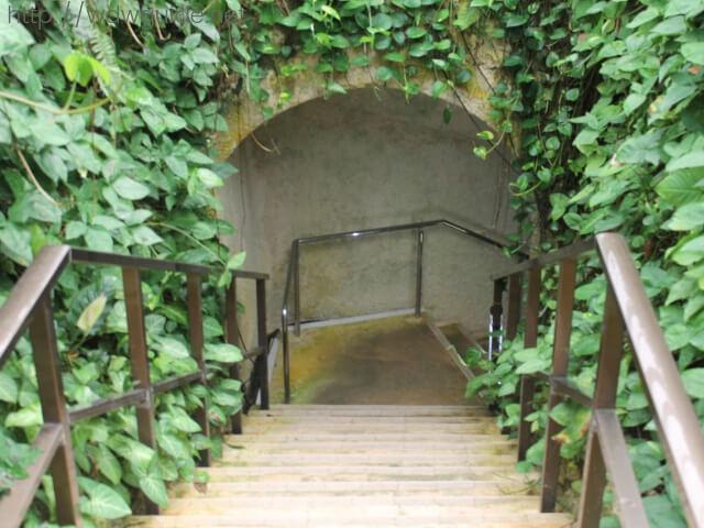 石垣島鍾乳洞の入り口の階段