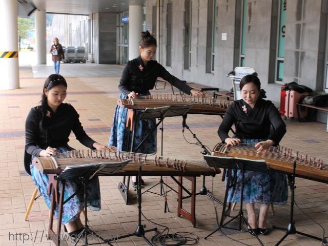韓国済州島での歓迎の琴の演奏
