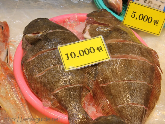 韓国済州島の東門在来市場で売られていたカレイ