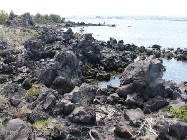 錦江湾の岩場