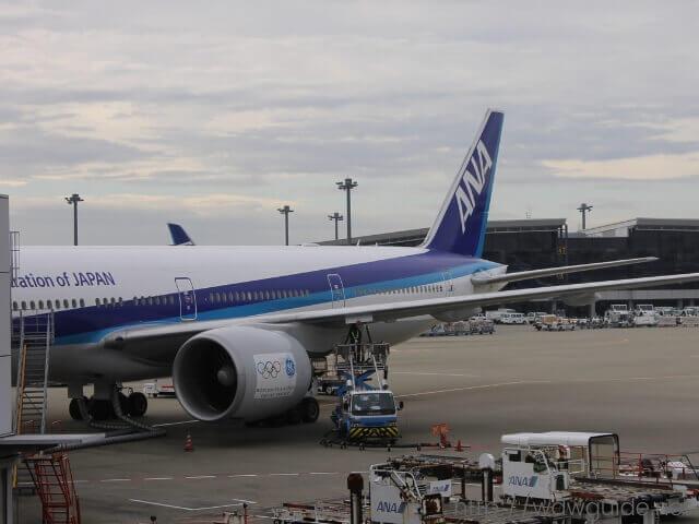 西カリブ海に向かうために搭乗したANAの飛行機