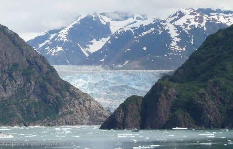 アラスカクルーズで行ったソーヤ氷河