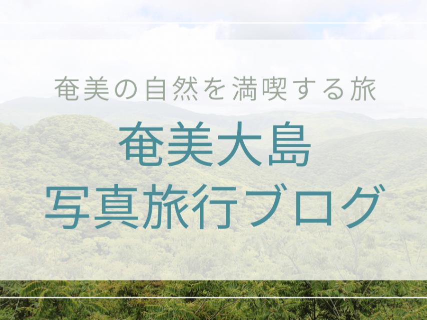 奄美大島 写真旅行ブログ