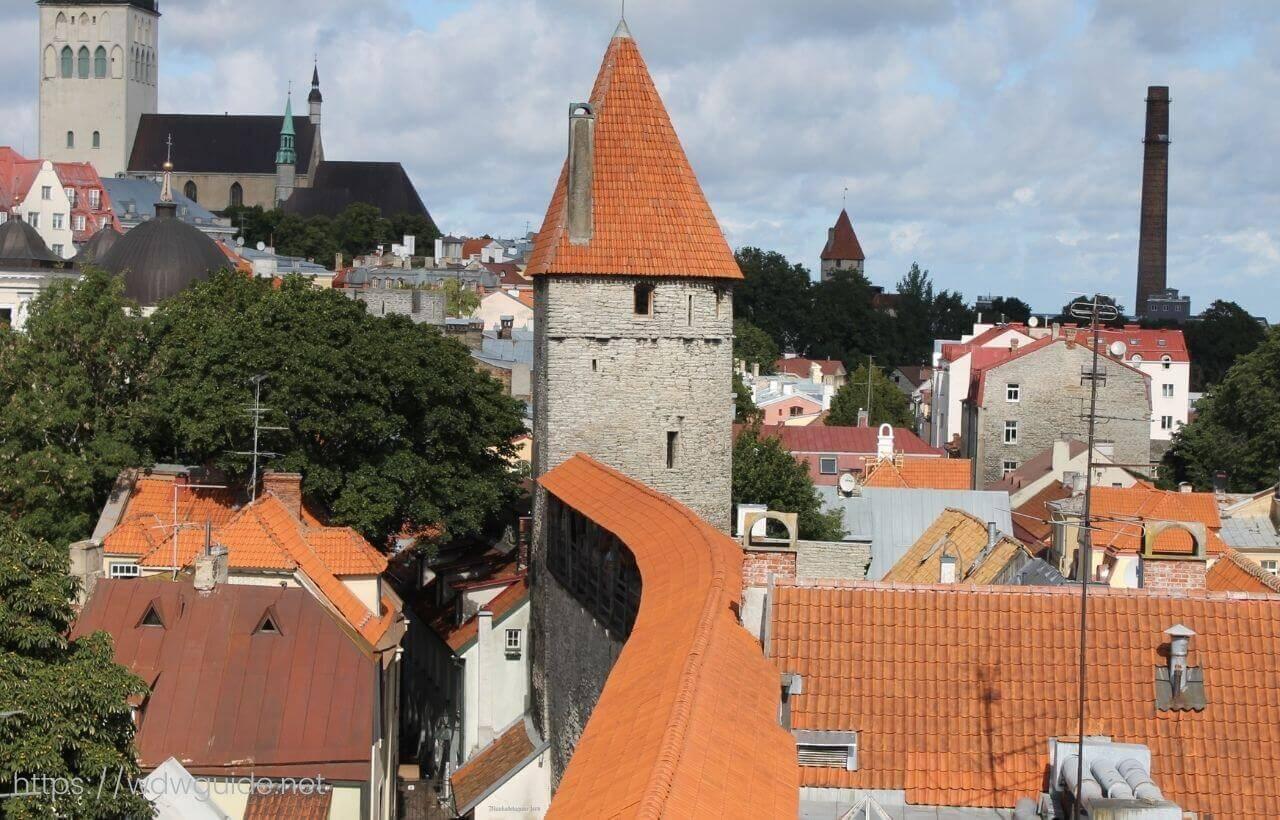 タリンの城壁から見た旧市街