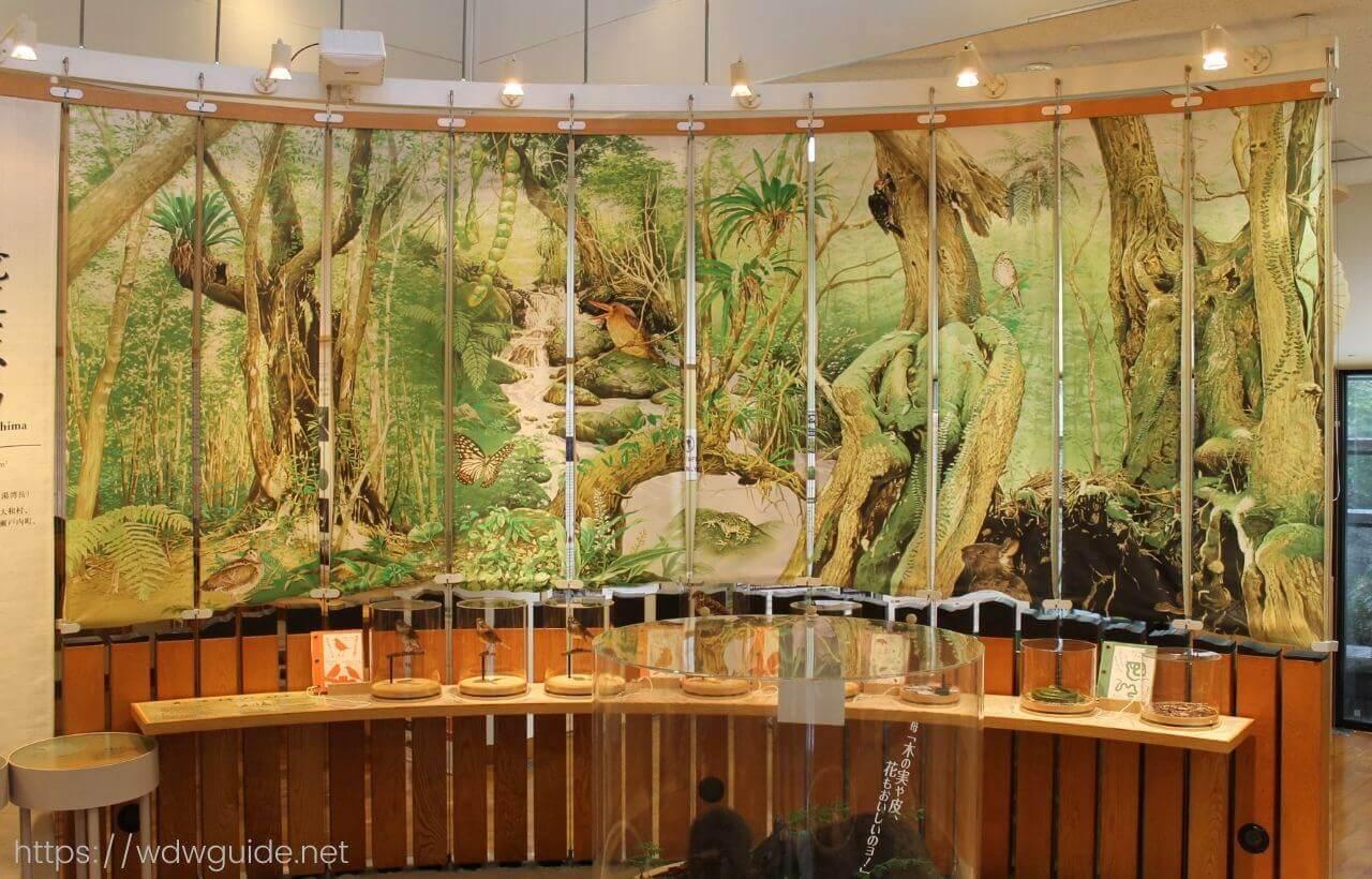 奄美野生生物保護センターのセンター内