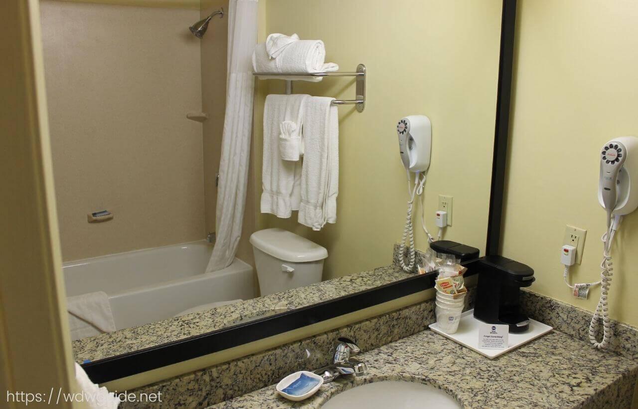 ベストウェスタン・フォートローダーデール エアポート/クルーズポートの客室の洗面台