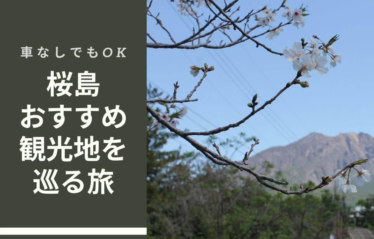桜島観光ブログ