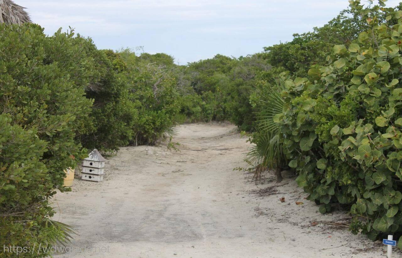 ハーフムーンケイの島内の道
